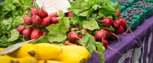 Visit the M Farmers Market every Thursday in the University Hospital Courtyard.
