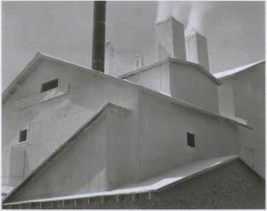 Picturing Buildings: Photographers and Architecture, 1855–1985
