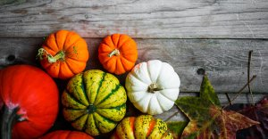 MHealthy Hosts Fall Favorites Chef Demonstration