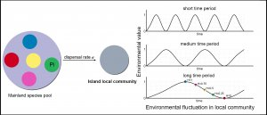 graphs of environmental fluctuation