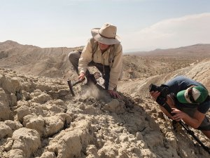 Catherine Badgley being filmed on an excavation