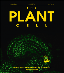 cover of Plant Cell journal with micro image