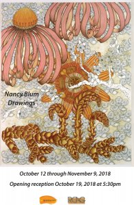 Nancy Blum Drawing Exhibit