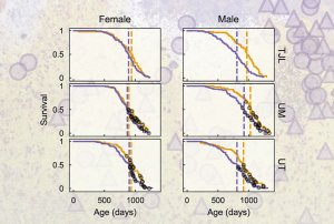 graphs of survival