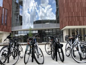 bicycles in front of bsb