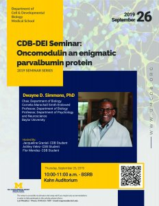 CDB Seminar - Simmons
