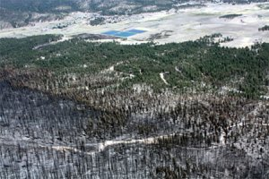 View from above of forest fire and unburned area and land beyond