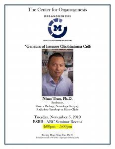Genetics of Invasive Glioblastoma Cells