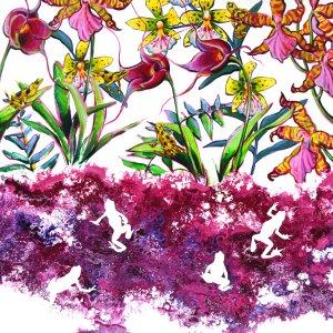 Zawacki ecology and evolution of amphibian susceptibility