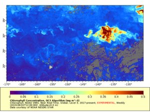 Map-Chlorophyll Concentrations