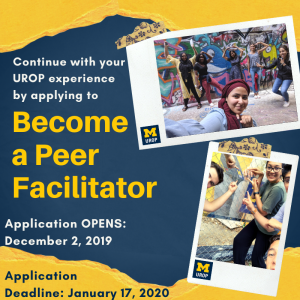 Become a Peer Facilitator