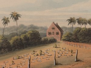 """Jodensavanne"" (Jew's Savannah), south of Paramaribo in Suriname: ""View of the synagogue and cemetery seen from the military cordon path"""