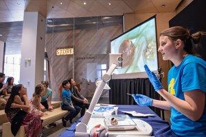 Science Forum Demos