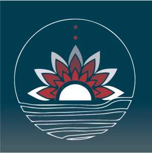 A/PI Celebration Logo
