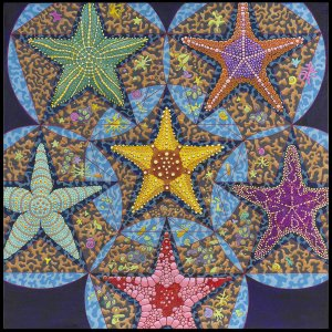 Starfish by Charles L. Gilchrist, photograph by the artist