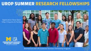 UROP Summer Fellowship