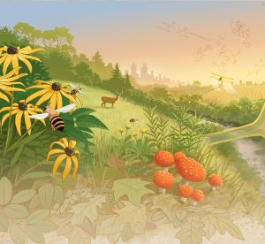 An illustration by John Megahan that he created for the Green Life Sciences Symposium featuring grassy hills, flowers, bees, mushrooms, deer, cityscape in the background, a crop dusting airplane over a farm field, weeds and more