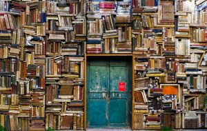 Book-covered walls