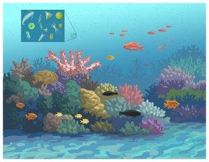 Coral reef illustration by John Megahan