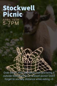 Grab dinner from the dining hall and bring it outside Stockwell for a farewell picnic!