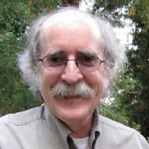 David Gilmartin, Department of History, NC State University