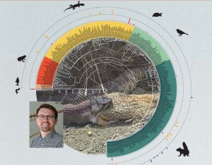 Circular phylogeny of small mammals, lizards, fish, birds, reptiles and amphibians, headshot of Matthew Holding, picture of a snake eating a small rodent