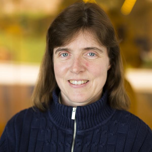 AE585 Graduate Seminar Series - Cyberphysical Flight Planning for Nominal and Emergency Situations: Professor Ella Atkins, Aerospace Engineering, University of Michigan