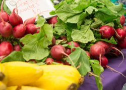 Visit the M Farmers Market on select Tuesdays at Wolverine Tower.